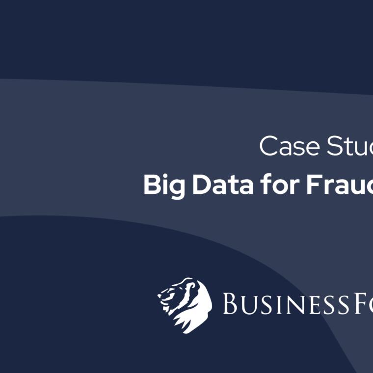 big-data-risk-management-software-fallstudie